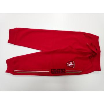 """Штаны """"Ferrari"""" красные"""